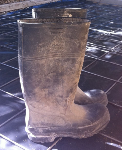 ppe-boots-831x